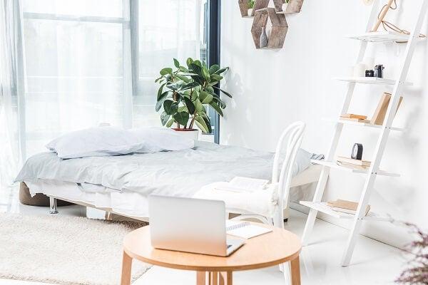 plant in bedroom