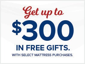 Get up to $300 in Free Gifts!
