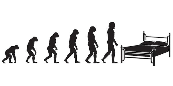 evolution of the mattress
